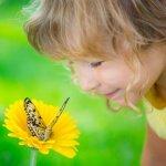 ショートストーリー『蝶々』